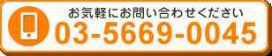 電話番号:03-5669-0045